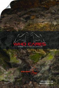 whocares_annual2016_aloitussivu