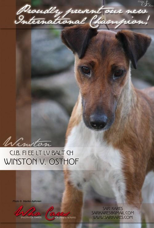 Winston_CH2011